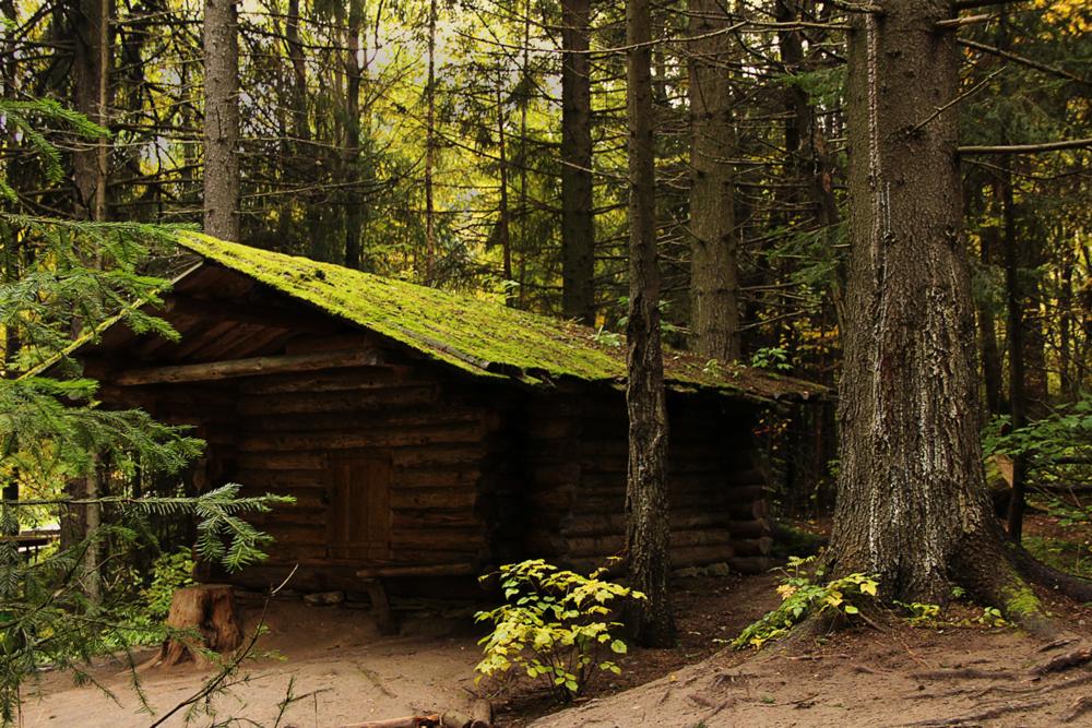 нужны картинки охотничий домик в лесу магазина плакаты