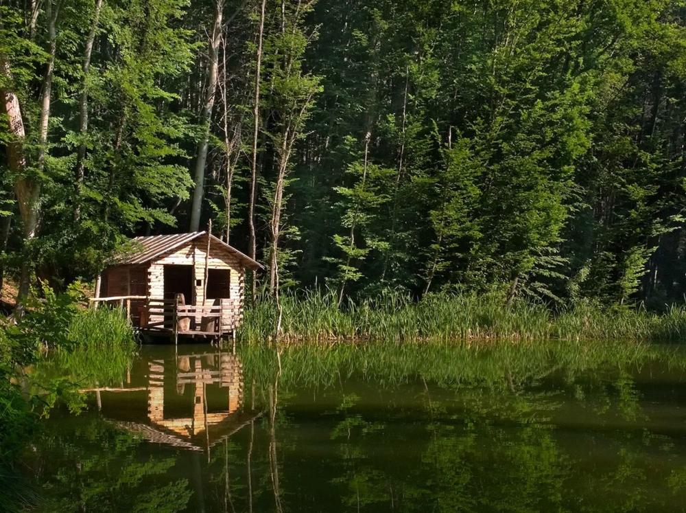 картинки охотничий домик в лесу можно