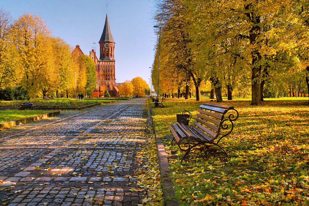 картинки красивые на тему осень в городе машины