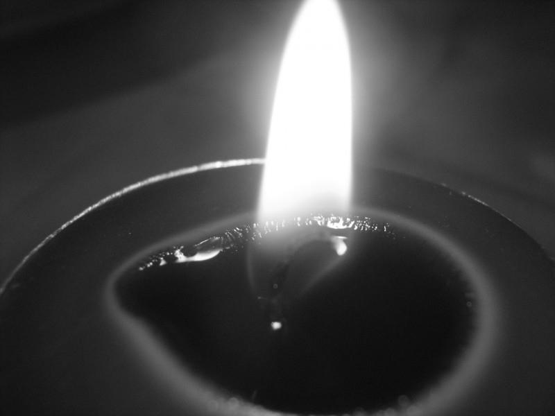 Черно-белое тепло