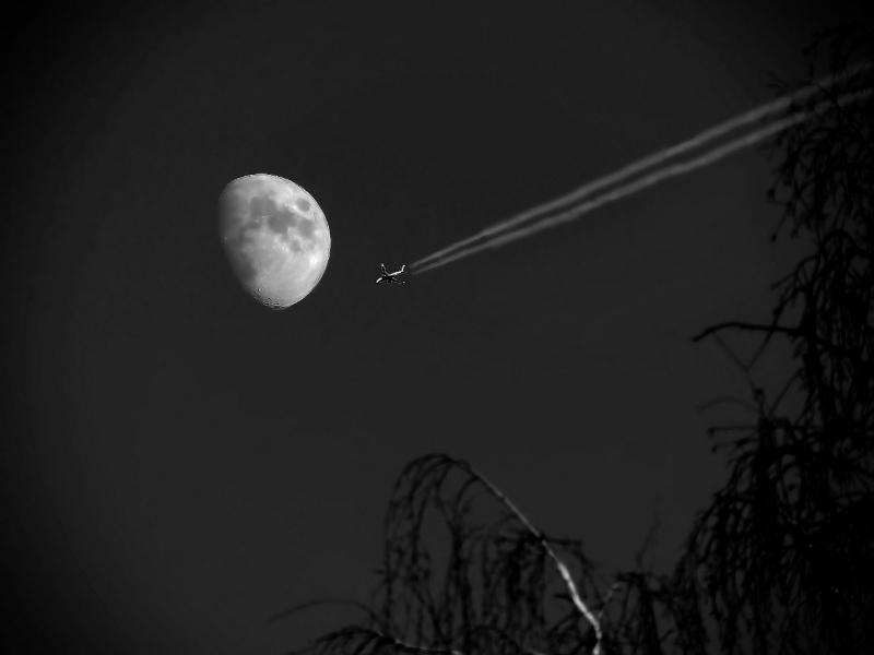 На Луну, батенька, на Луну...
