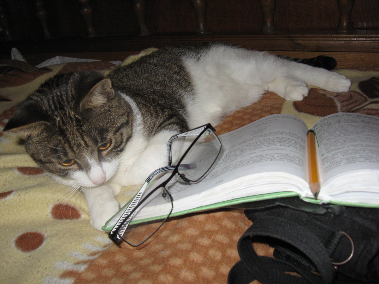 Устал читать, пара отдохнуть
