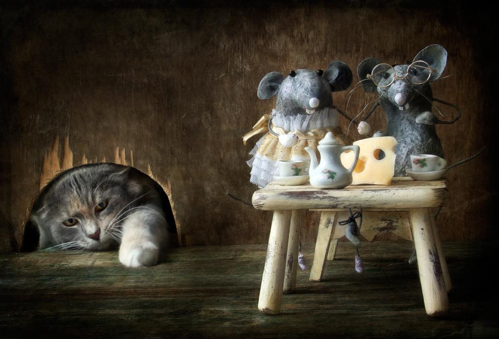 Украина приколы, картинки с мышами прикольные с надписями