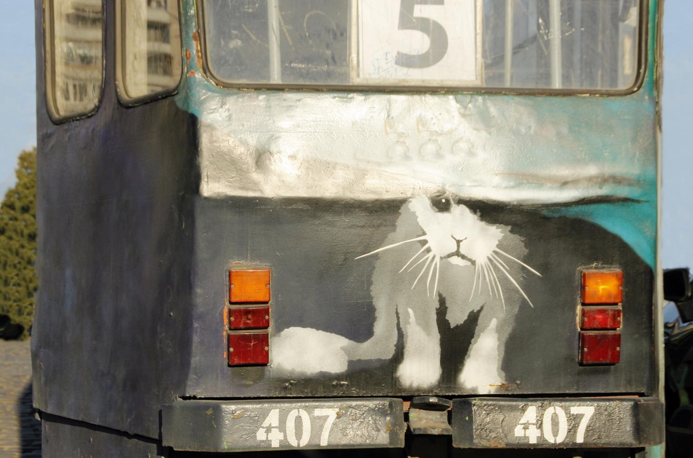Шел трамвай пятерочка