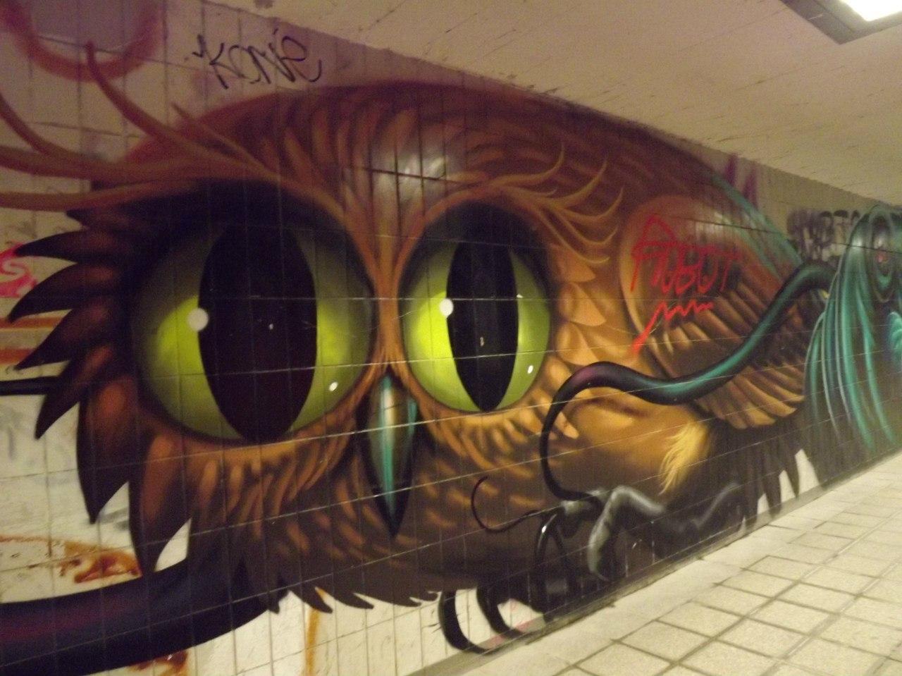 Совушка в городском подземелье