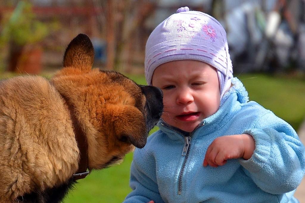 Дай поцелую!