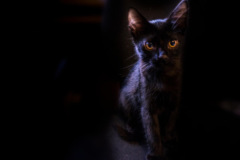 Чернее ночи