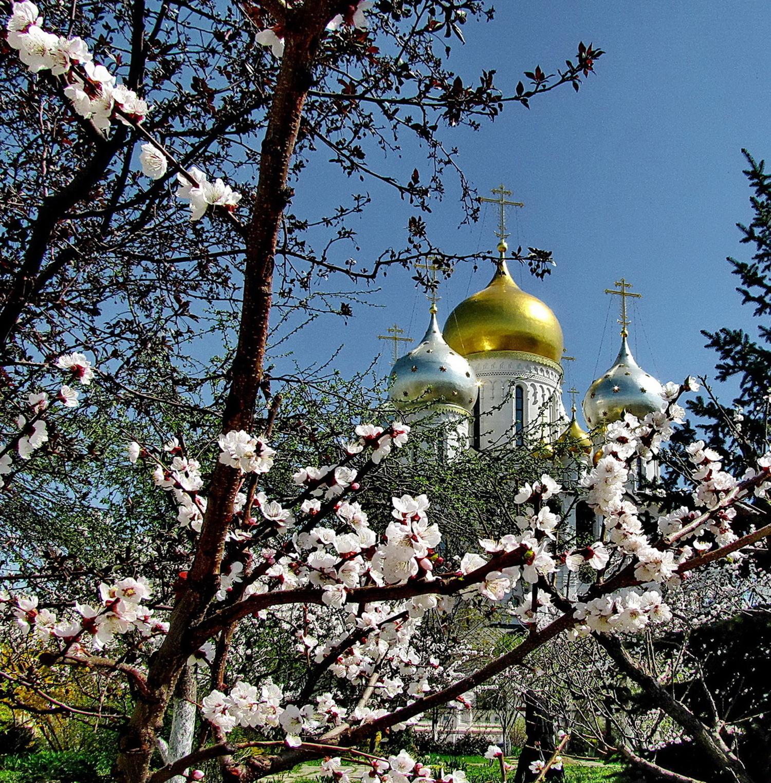 Весна в Зачатьевском монастыре.