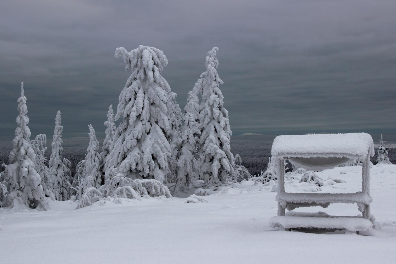 """""""Снег да снег кругом"""""""