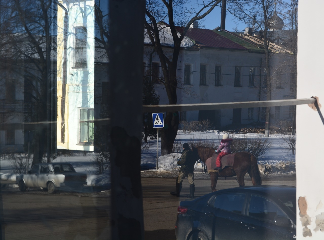 По улицам коня водили