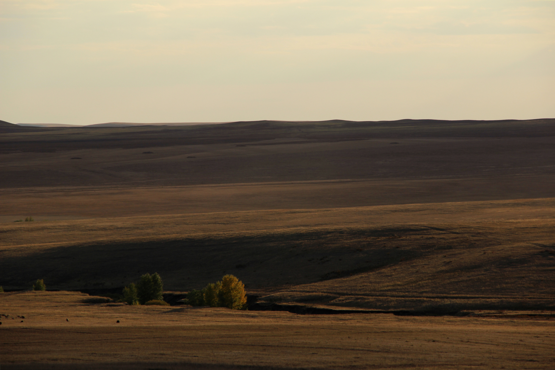 Осенняя степь