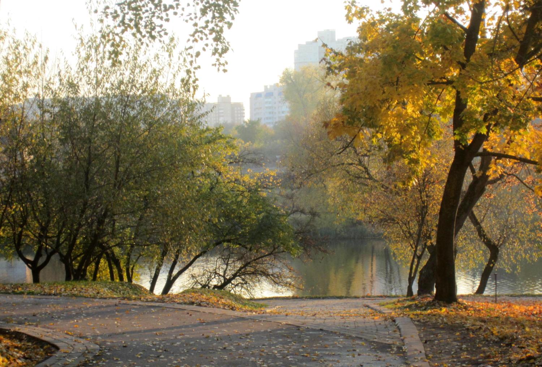 В Лошицком парке. Минск