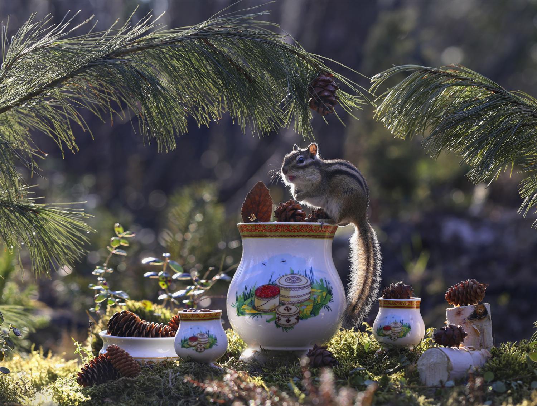 Ореховый рай