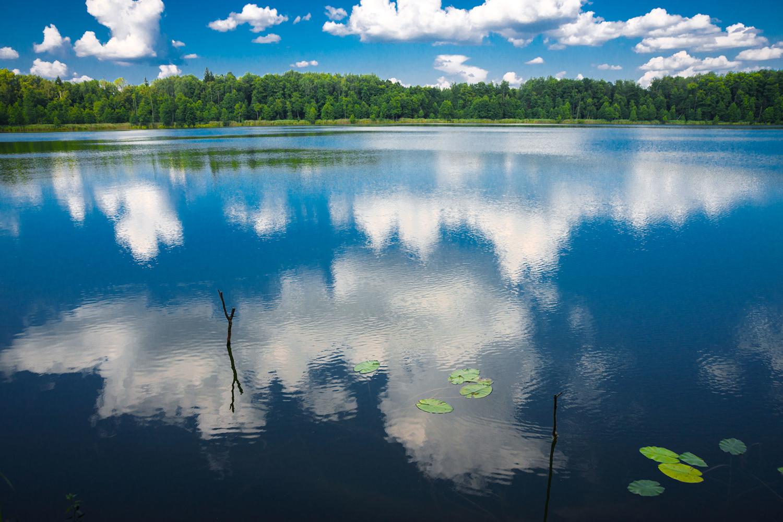 Отражаясь в озере