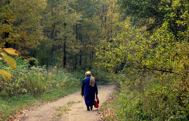 Осень природы, осень жизни...