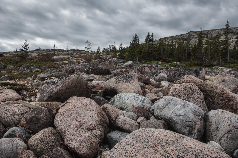Каменистый путь