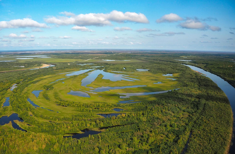 Непроходимые болота