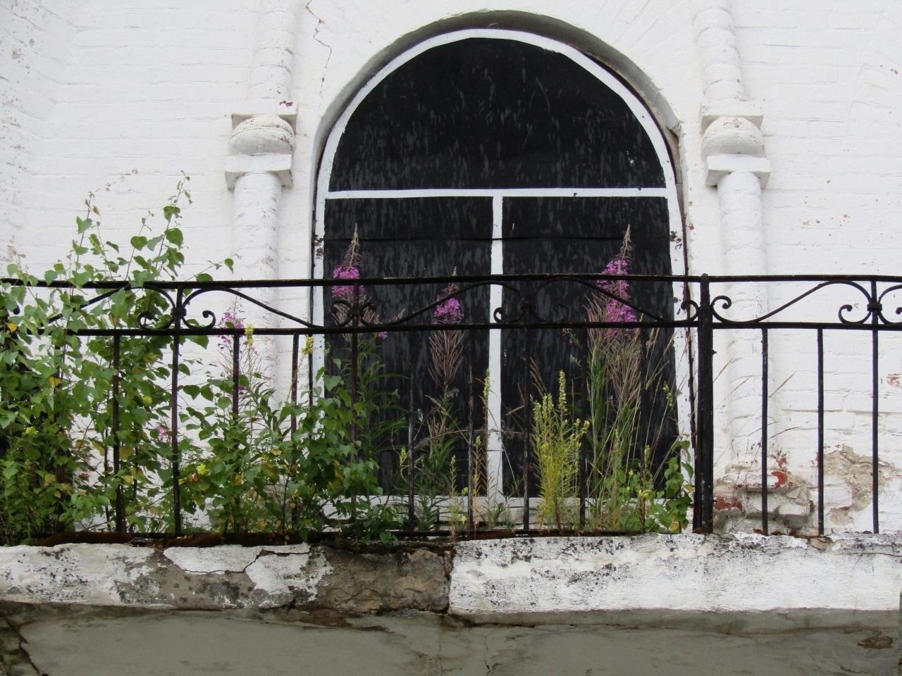 Иван-чай на старом балконе