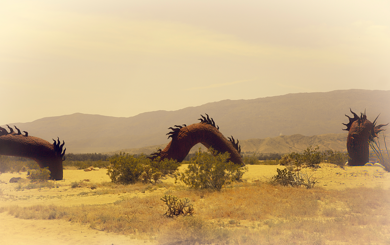 В Долине Драконов