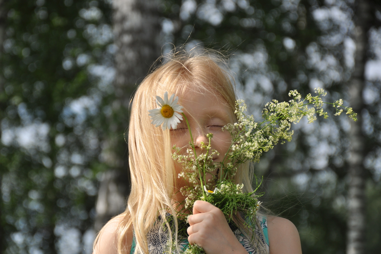 Запах лета