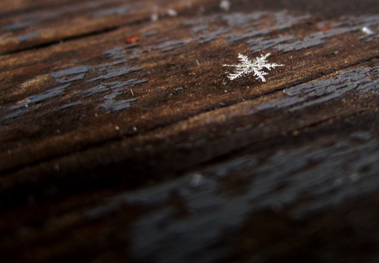 Одна снежинка