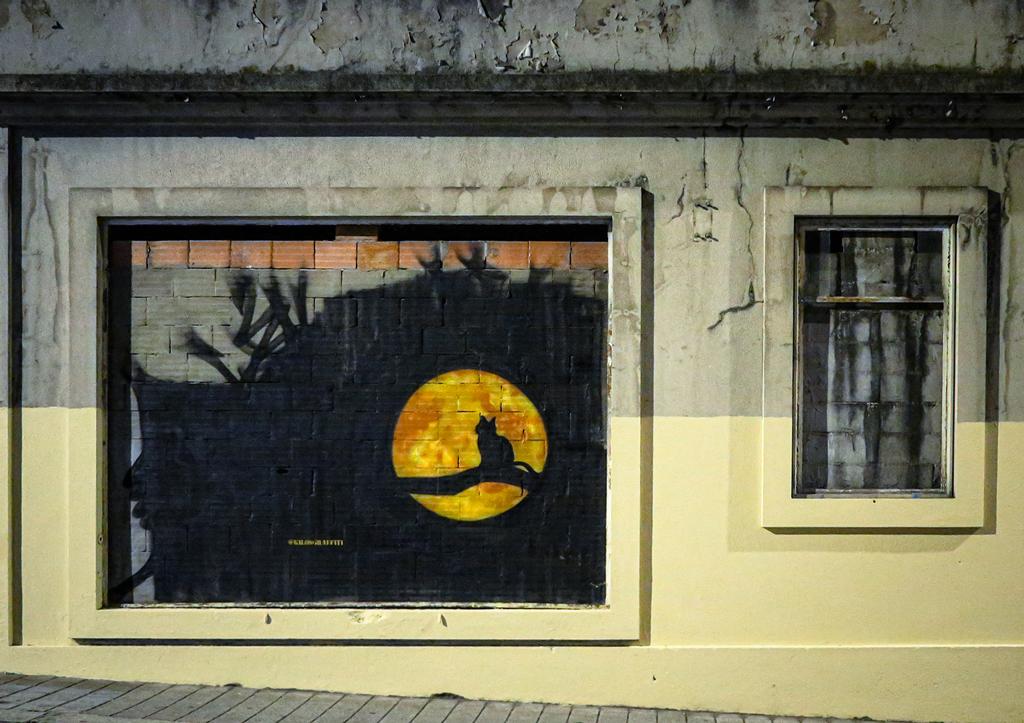 Ночной этюд с лунным котом
