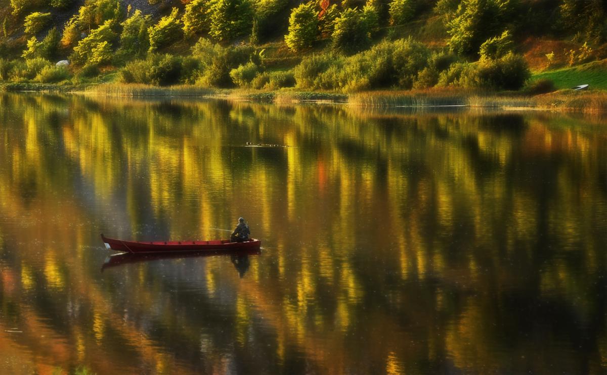 Ловля золотой рыбки в волшебной реке