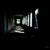 Жизнь во тьме