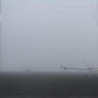 """""""В молочном тумане"""""""