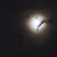 Ночь, луна...и облака.