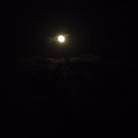 Светлое пятно в ночи