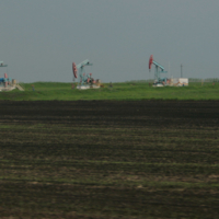 Башкирские поля