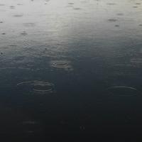 Водяные кольца