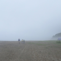 Туман с моря