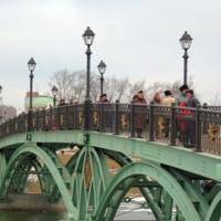 Мост в Москве (январь 2008 г)