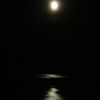 Художница луна.