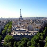 Взгляд парижского воробья