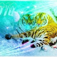 2010 Парочка тигров