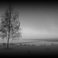 На берегу Волги...