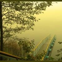 Желтый туман