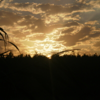 Закат на Речке