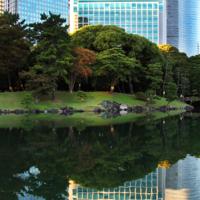 Отражение мира Японии....