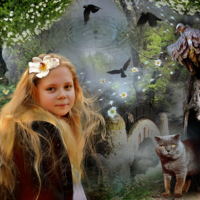 На краю волшебного леса