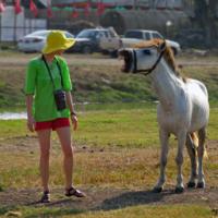 Конь - людоед