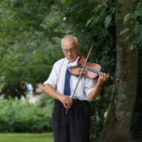 Скрипка в парке