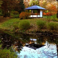 Осенний тихий пруд
