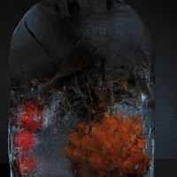 Ледяная консервация