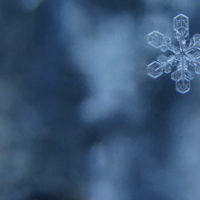 Ледяная звездочка