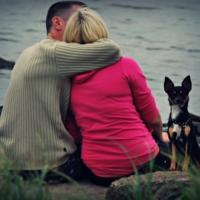 любовь и пёс на стороже