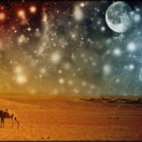 Марсианские будни